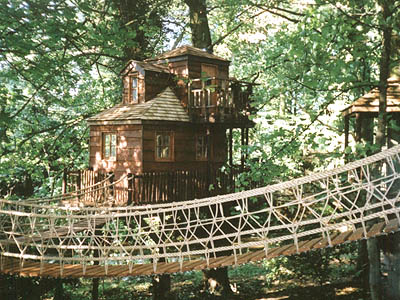 Unusual Tree Houses Just Short Of Crazy