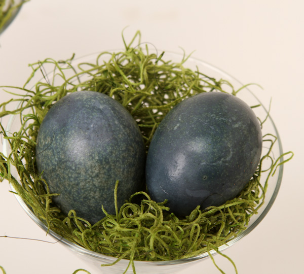 Natural Dyed Eggs-7