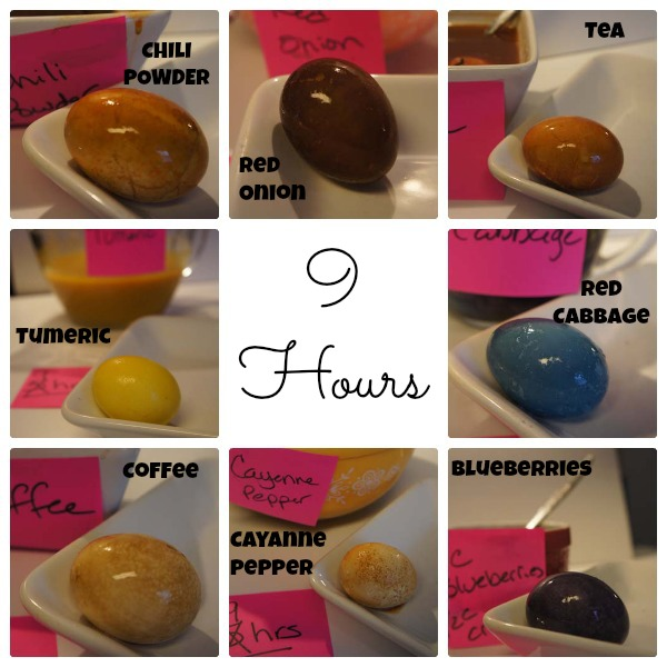 9 hours title Natural Dyed Easter Eggs