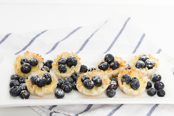 Lemon Blueberry Spring Treats