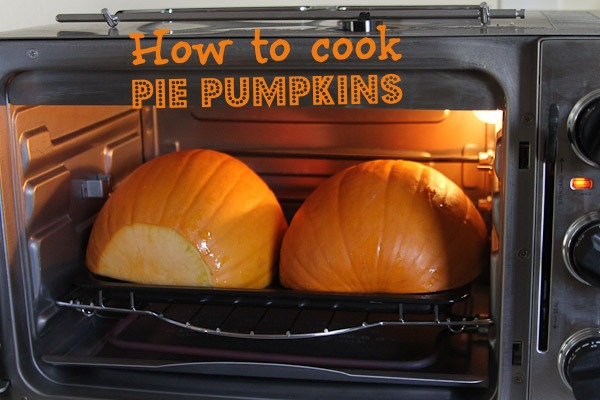 how to cook pie pumpkins